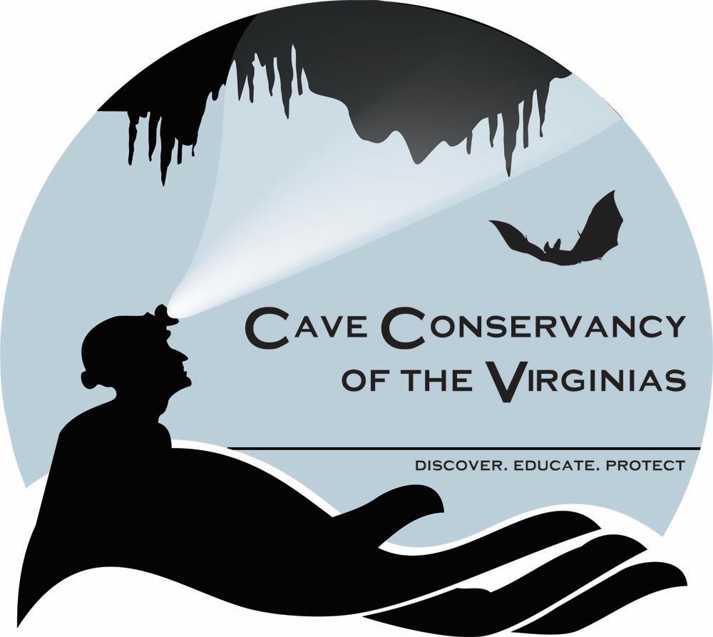 CCV_logo